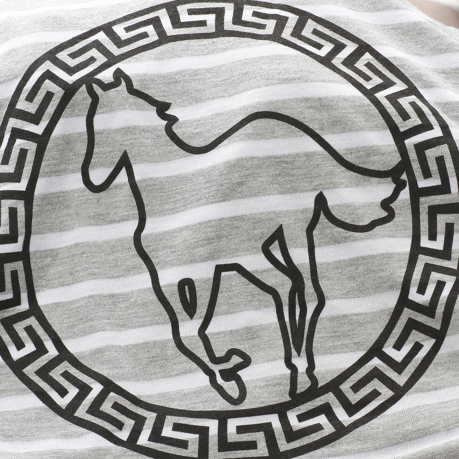 Circle Pony Striped Women's Crop Top