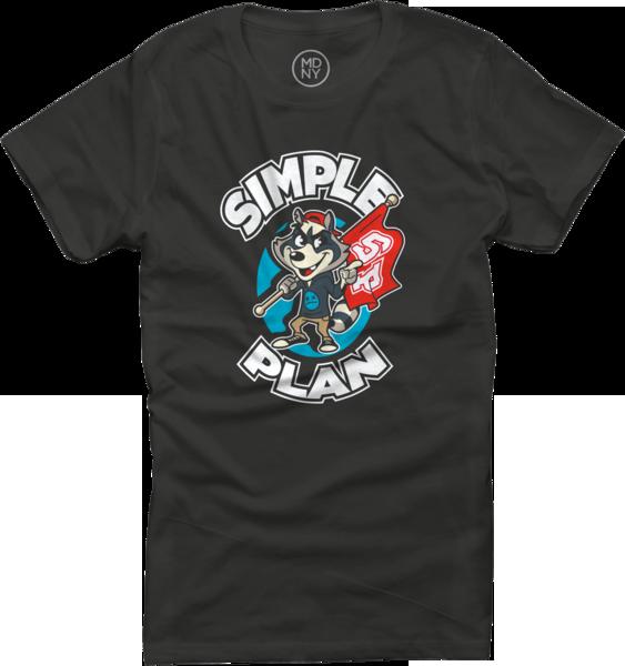 Raccoon Black Womens T-Shirt