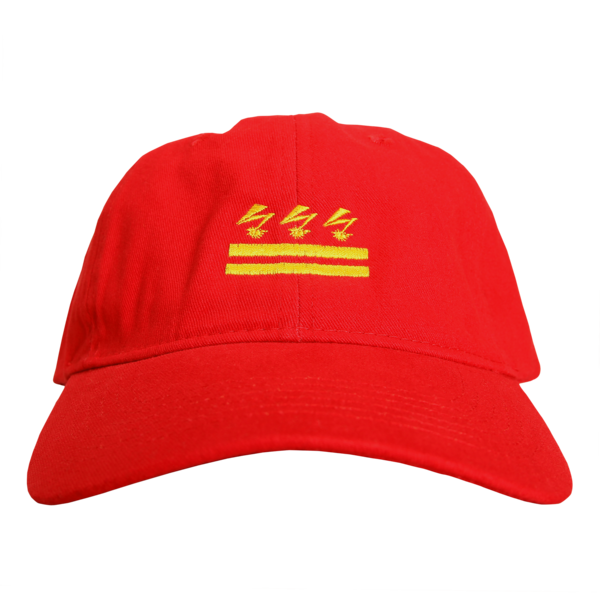 Build a Nation Red Dad Hat