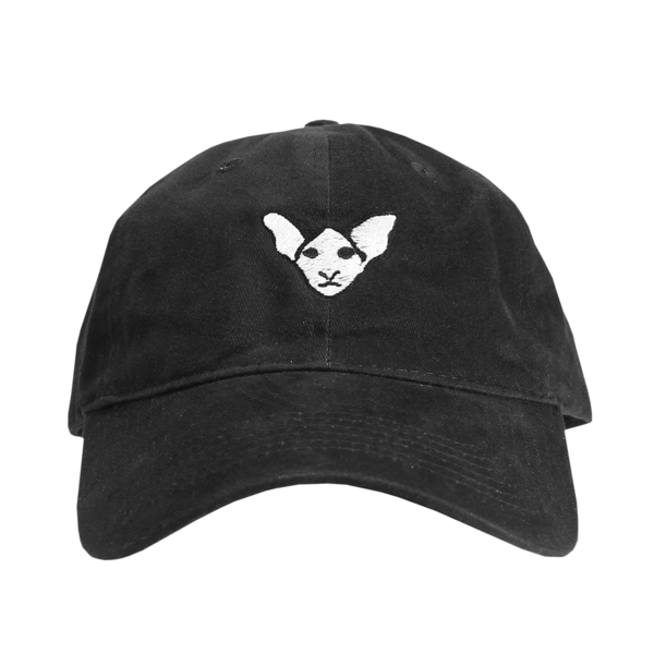 Dobbikats - Teddy Black Dad Hat