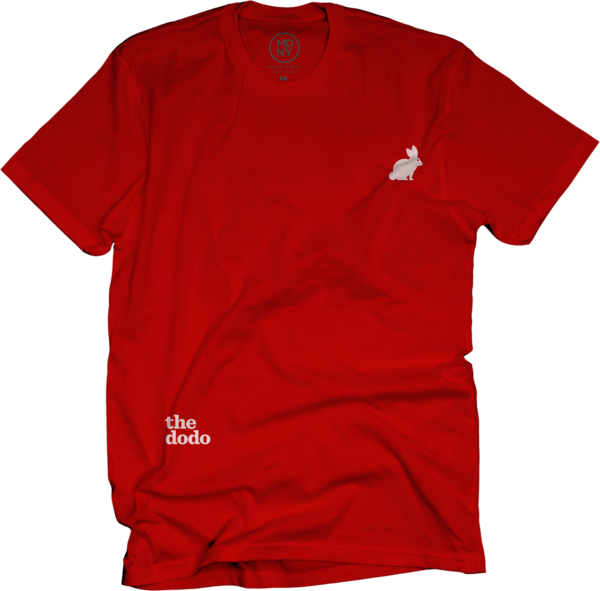 Dodo Friends Tee - Rabbit/Red