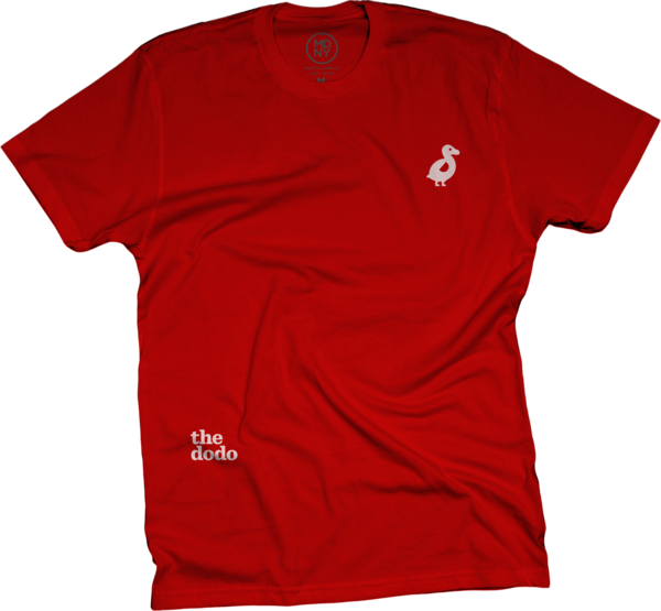 Dodo Friends Tee - Dodo/Red