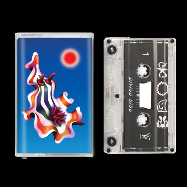 Foam - Cassette