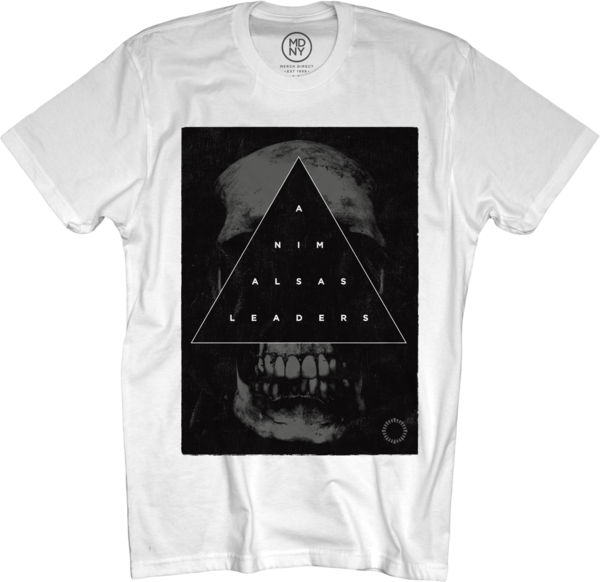 Triangle Skull on White