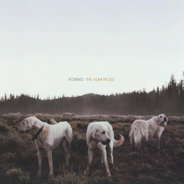 Foxing The Albatross CD